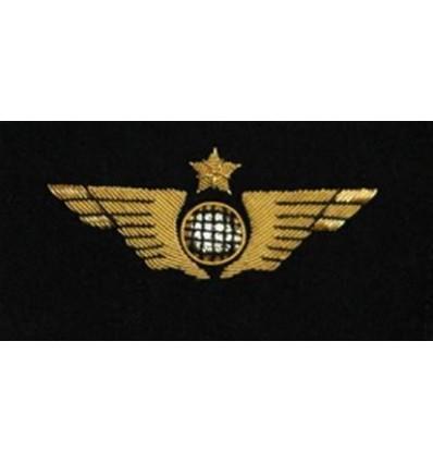 Aile de Poitrine Pilote Avion Doré à Plat à Coudre Brodée sur Feutrine